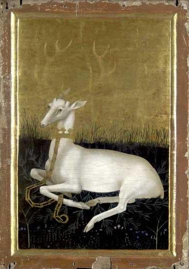 white hind